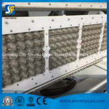 Papiermassen-Ei-Tellersegment, das Maschine, Papierplatten-Herstellung-Maschinen-Preis herstellt