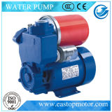 PS Selbst-Priming Peripheral Pump für Irrigation mit Compactness Reliablility
