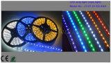 Lumière de bande LED à basse tension DC12 / 24V de haute qualité / lumière de corde