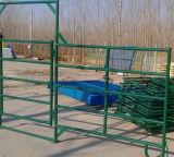 Сверхмощная загородка стальной трубы фермы для лошади/скотин с горячим окунутым Galvanized (SF-001)