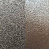 [سغس] دوليّة [غلد مدل] [ز028] جلد نجادة جلد نجادة جلد [بفك] جلد