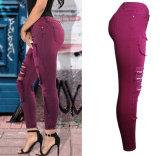 De Broek van de Jeans van de Hete van de Verkoop van de Herfst van de lente van Spandex Slanke van de Wijn Rode Verbonden Duidelijke Dame van het Potlood