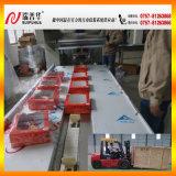 큰 빵 베개 포장지 기계 (ZP590)