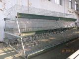 Certificat de cage de poulet galvanisé par vente chaude d'ISO9001