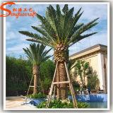Großhandel Garten-Dekoration Pflanze Künstliche Dattelpalmen