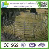 정연한 관에 의하여 용접되는 가축 가축 우리 위원회 (중국 직접 공급자)