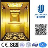 Aote Vvvf profissional conduz para casa o elevador da casa de campo (RLS-255)
