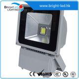 Fabricante elevado do projector do diodo emissor de luz de Brigelux IP65 do lúmen