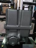 Double pompe de combinaison du gicleur deux de pompe à essence