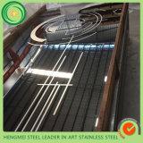 Het roestvrij staal verfraait de Cabine van de Lift van Producten die in China wordt gemaakt