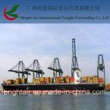 Transport d'océan d'agent maritime de Guangzhou expédiant la grande logistique de postes de Chine en Colombie