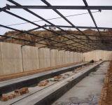 Azienda avicola d'acciaio prefabbricata di montaggio specialmente per l'Africa