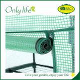 Gradas económicas de Onlylife las 3 ponen verde el mini invernadero