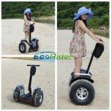 Autoped van de Blokkenwagen van de Goede Kwaliteit van Ecorider de Elektrische