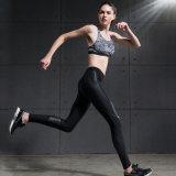 Usura di ginnastica del reggiseno di yoga di usura di forma fisica delle donne di alta qualità