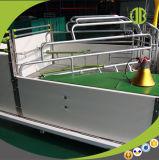 암퇘지를 위한 돼지 Breeding 그리고 새끼를 낳는 크레이트 돼지우리 장비 농업 장비