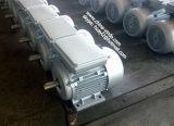 Motore asincrono di monofase di Tefc