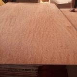 pegamento de la madera contrachapada WBP/Mr de la cara de 15m m Bintangor