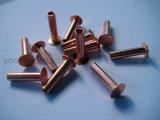 Del ribattino cavità d'acciaio semi