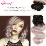 Hot Popular Pure Ombre Indian Virgin Hair Bundles