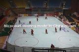 De multi het Schaatsen van het Basketbal van het Badminton van het Hof van het Hockey van het Doel Gealigneerde Tegel van het Hof (het Goud/het Zilver/het Brons van het Hockey)
