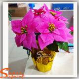 Цветки шелка украшения рождества поставкы Китая искусственние