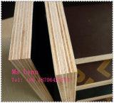 El negro/la película antirresbaladiza de Brown hizo frente a la madera contrachapada/a la madera contrachapada de la construcción