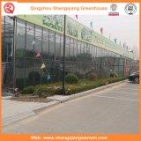 Agricoltura/serra giardino di vetro commerciale per i fiori