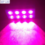 Greenhouseのための完全なSpectrum 1008W COB LED Hydroponics Grow Light