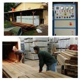 Machine van de Oven van het hout/van het Timmerhout de Drogere om Hout met Hoge Frequentie Te drogen