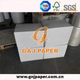 Gute Qualitäts-PET überzogenes Kunstdruckpapier im Blatt für Drucken