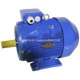 Cer-anerkannter Elektromotor Wechselstrommotor-asynchroner Bewegungsinduktions-Motor der Majestät-Ie3 IEC