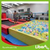 球のプール、販売のための泡ピットが付いている専門の巨大で安いIndoor&Outdoorのゲームの体操のトランポリン公園