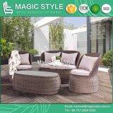 Sofà di vimini di combinazione del sofà del sofà P.E di disegno del sofà stabilito del rattan del sofà del cigno nuovo (STILE MAGICO)
