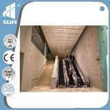 Scala mobile dell'interno di grado 30 di velocità 0.5m/S di Vvvf per il centro commerciale