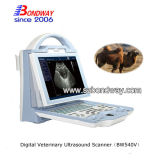 Scanner portatile veterinario di ultrasuono della strumentazione 4D Doppler