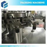 절인 음식 주머니 진공 밀봉 기계 (FA-V6-200)