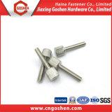 Parafusos de polegar finos serrilhados do aço DIN653 inoxidável