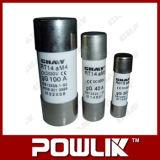 Rt18, acoplamiento de alta velocidad cilíndrico termal del fusible Rt19
