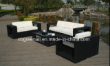 Mobília do jardim do Rattan de Handmake