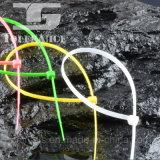De kleurrijke Nylon Band van het Pit van de Band van de Kabel Plastic