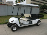 2 Sitze Electric Colorful Golf Carts mit Cargo Box (Du-G4L)