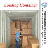 Consolidação (pegarar e coletar), ar do serviço da logística & transporte do mar