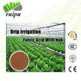 Água - ácido Humic orgânico do fertilizante ácido solúvel de Fulvic da alta qualidade