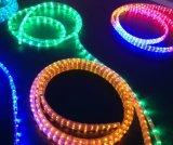 Lumière de bande imperméable à l'eau légère de la corde DEL du contrat à terme 3W/M SMD 5050