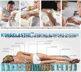 Colchón de la espuma del látex del resto del sueño con el resorte Pocket de 7 zonas