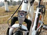 Bici elettrica poco costosa della città con Ce