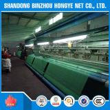 Filet de sécurité vert d'échafaudage de qualité de HDPE