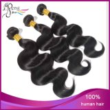 熱いブラジルの加工されていない人間の毛髪のブラジルのバージンの毛ボディ波
