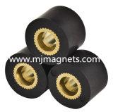 Plastik-PPS-Einspritzung-geklebter Magnet für Automobil